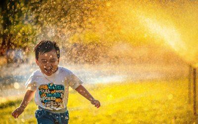 Infolettre #60 – Cultivons la joie et le bonheur d'être vivant